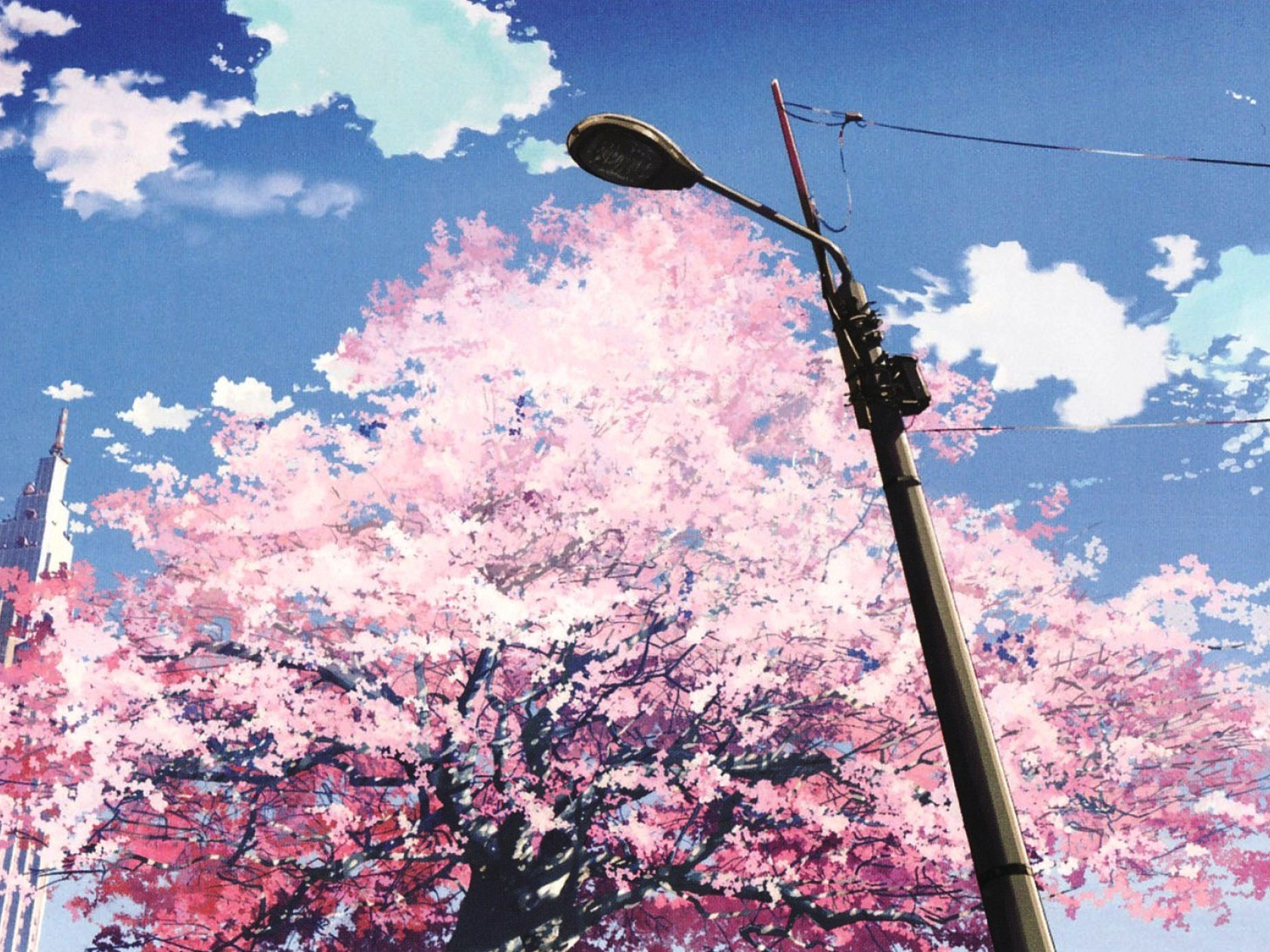5 Centimeters Per Second Download 5 Centimeters Per Second Image