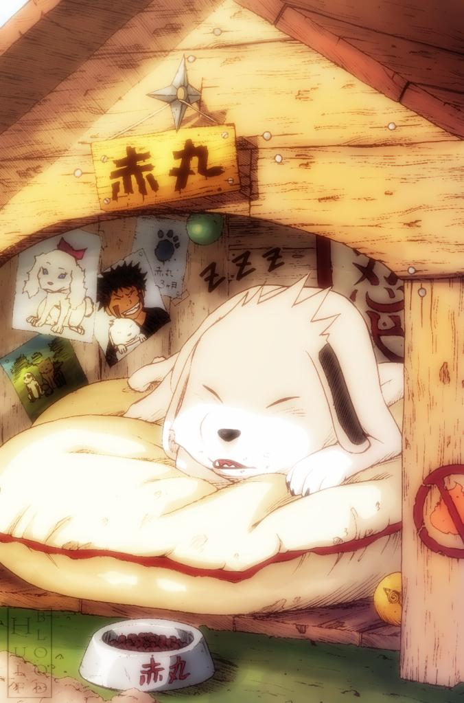 Tags: Anime, Hulfblood, NARUTO, Akamaru (NARUTO), Inuzuka Kiba, Dog House, Zzz, deviantART, Fanart From DeviantART, Fanart, Mobile Wallpaper