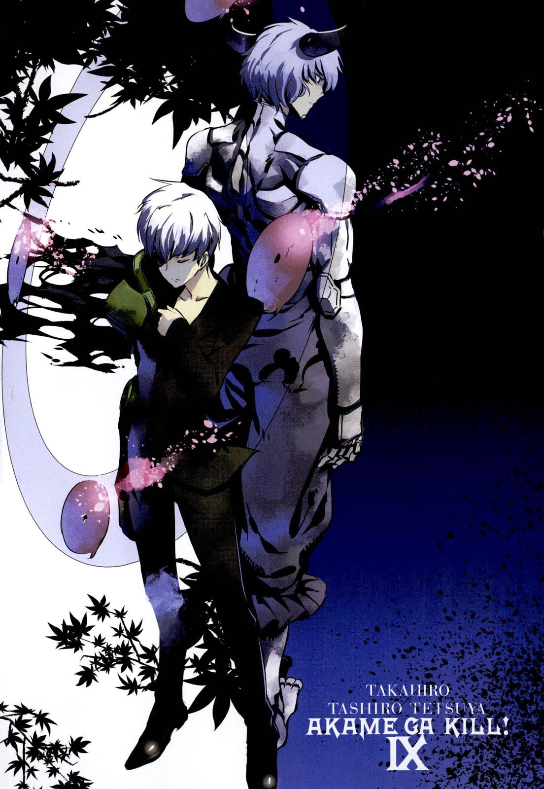 Akame Ga Kill Mobile Wallpaper 1746006 Zerochan Anime Image Board