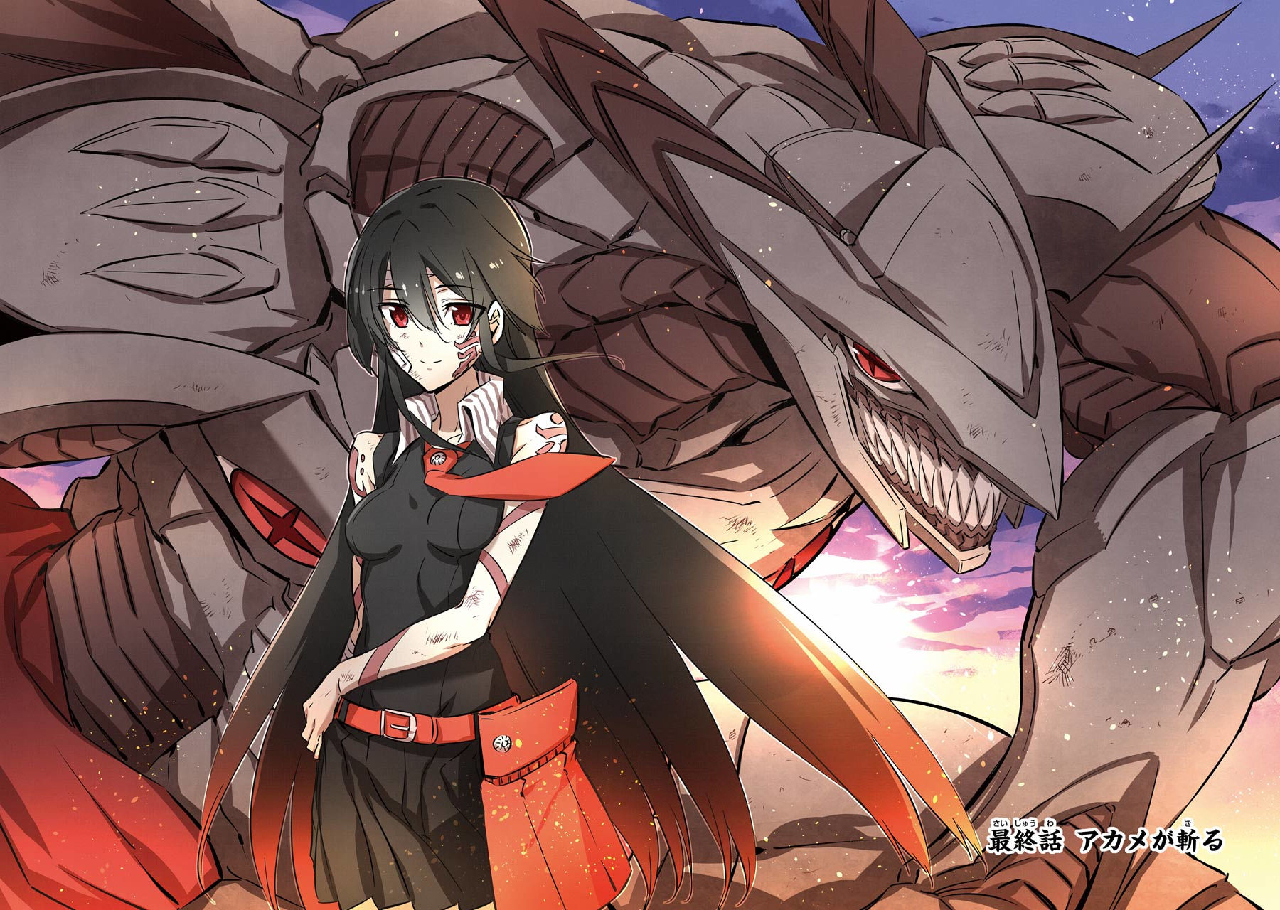Tatsumi Akame Ga Kill Akame Ga Kill Zerochan Anime Image Board