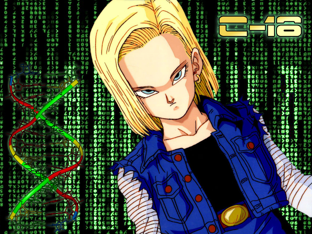 Android 18/#1081405 - Zerochan
