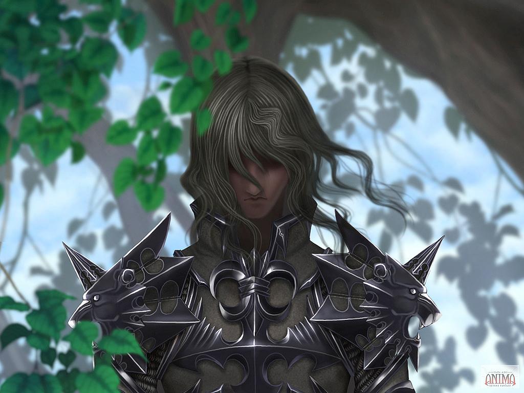 anima beyond fantasy pdf francais