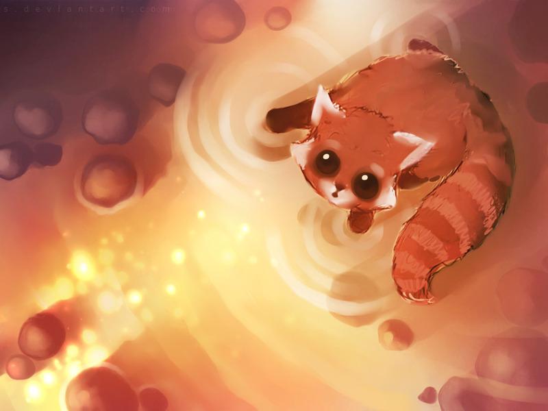 red panda - animal