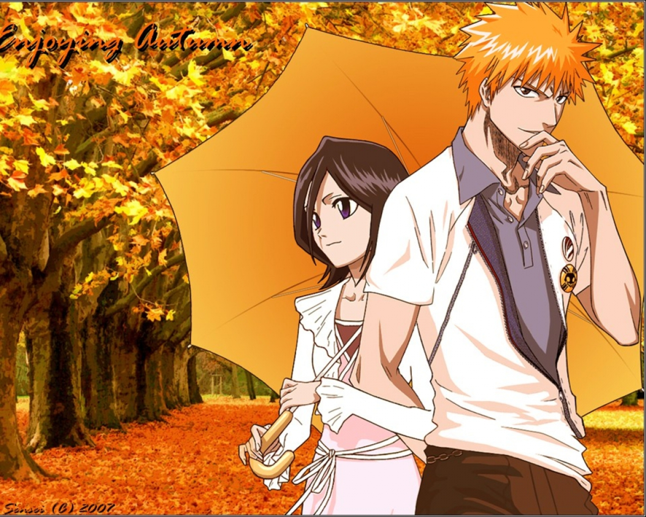 Rukia kuchiki and ichigo kurosaki