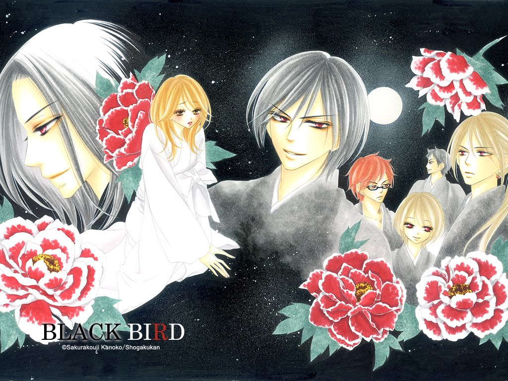 Black Bird Manga  C B Download Black Bird Manga Image