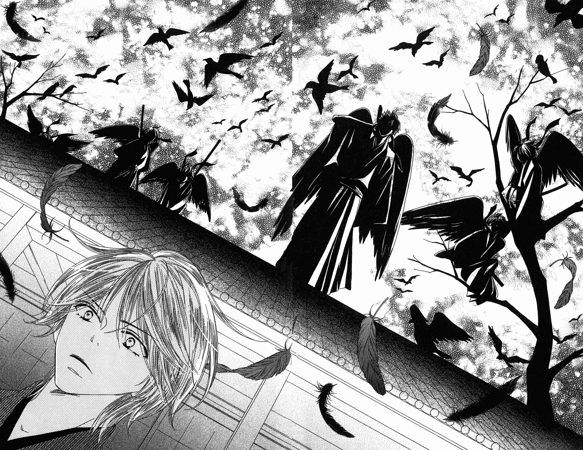 black bird  manga  - sakurakoji kanoko - image  1656039