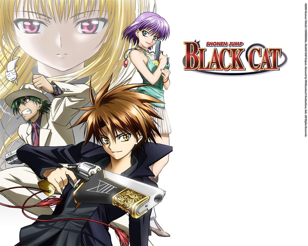 Black Cat Series Wallpaper Zerochan Anime Image Board