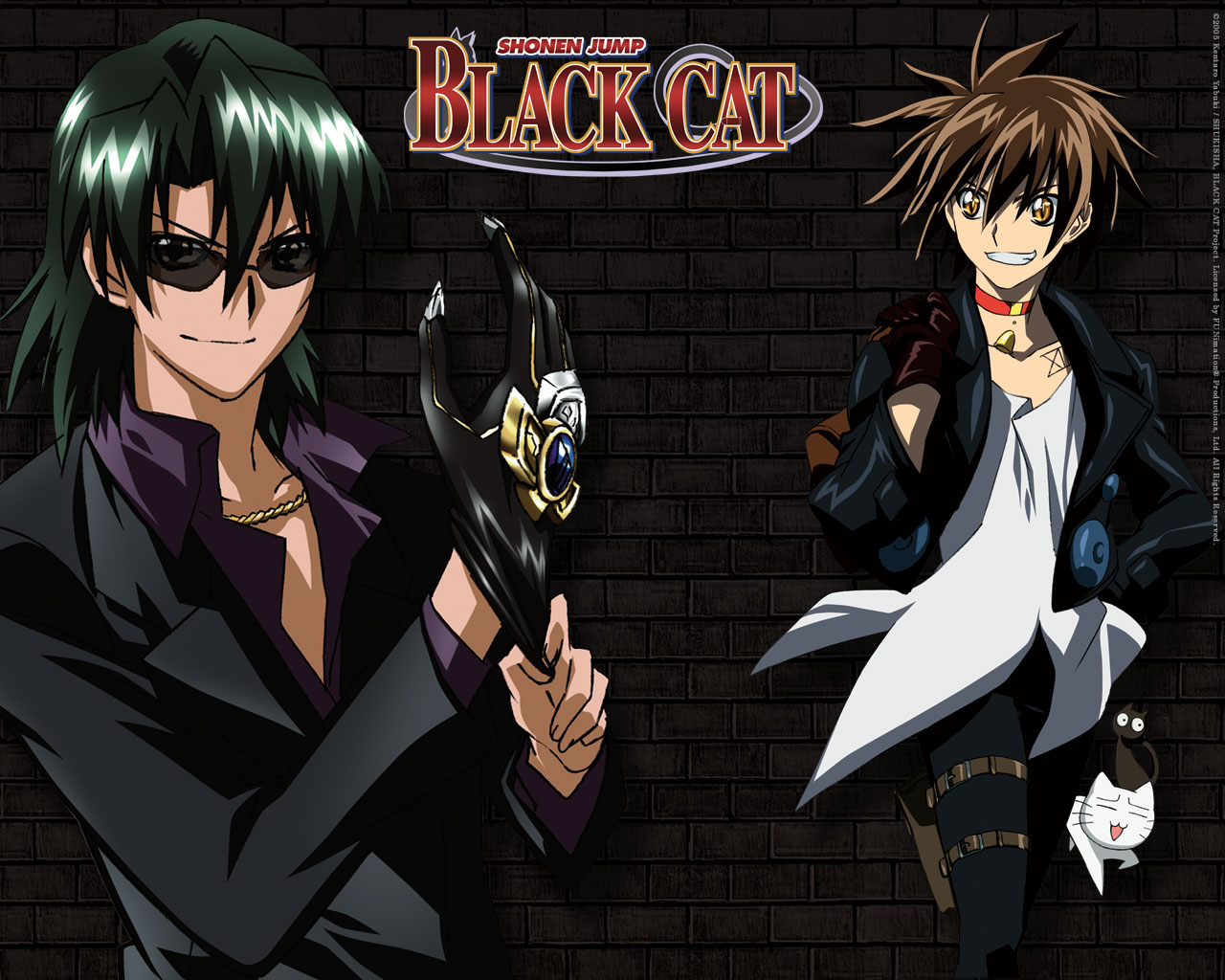 Anime With A Black Cat