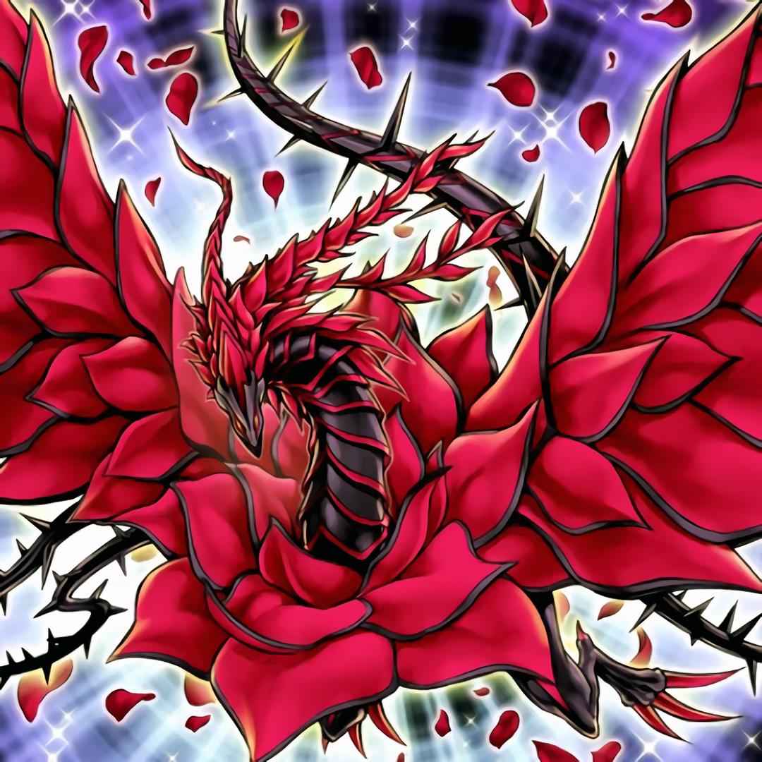 black rose dragon - yu-gi-oh  5d u0026 39 s