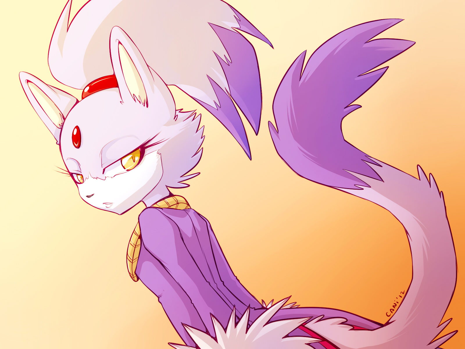 Blaze The Cat Sonic Rush Adventure Wallpaper 1151211 Zerochan