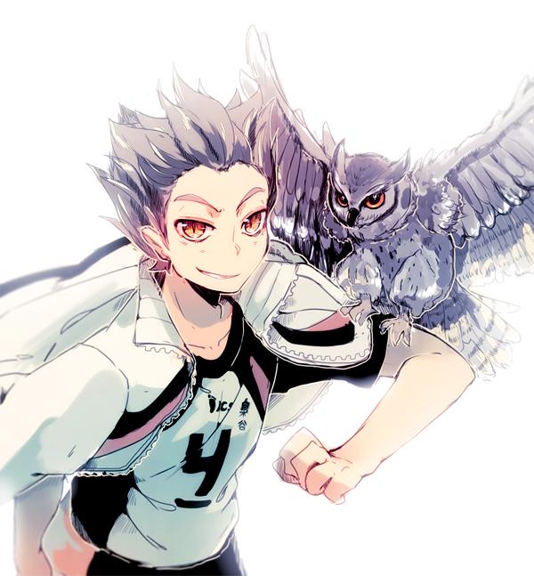 Tags: Anime, Shiuka (Shiupiku), Haikyuu!!, Bokuto Koutarou, Volleyball Uniform (Fukurodani Academy), Fanart From Pixiv, PNG Conversion, Pixiv, Fanart