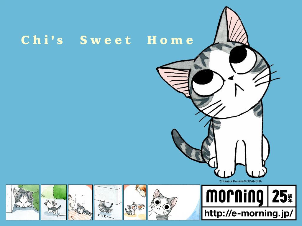 Chi Cat Cartoon