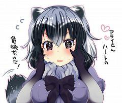 Common Raccoon (Kemono Friends)
