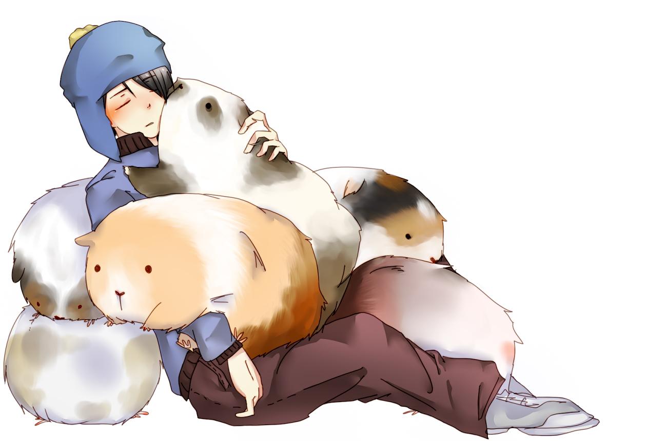 Guinea Pig - Animal - Zerochan Anime Image Board