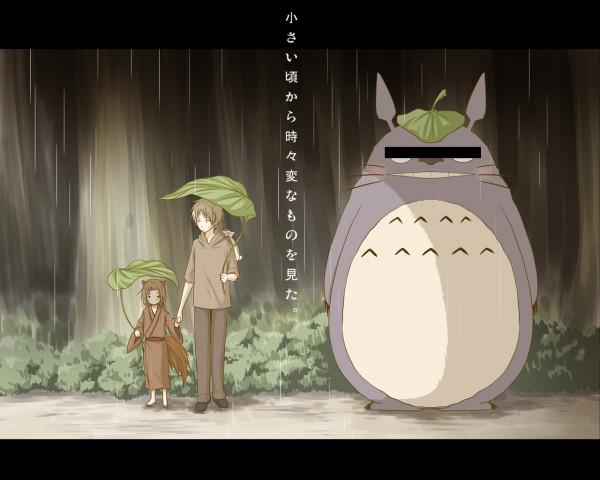 Tags: Anime, Pixiv Id 135956, Natsume Yuujinchou, Tonari no Totoro, Totoro, Natsume Takashi, Kogitsune