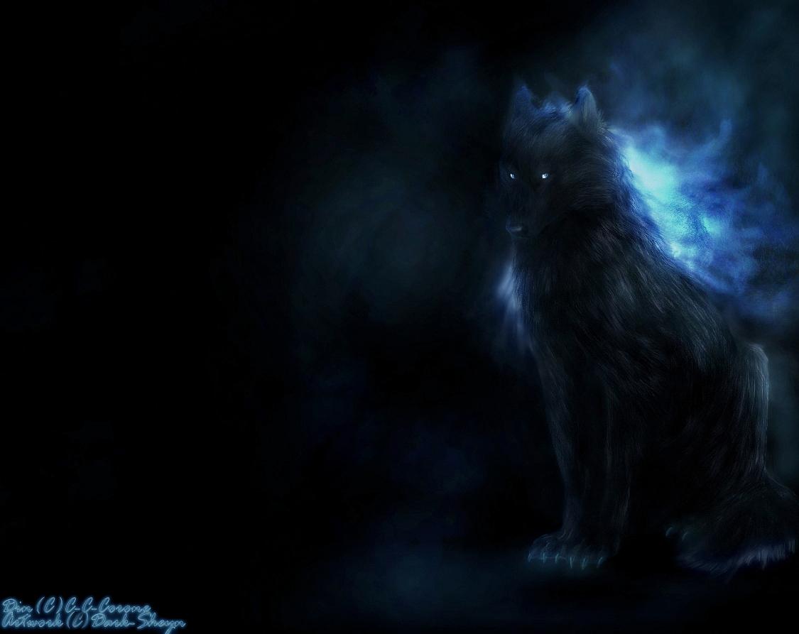 Dark-sheyn (Artist)/#906957 - Zerochan