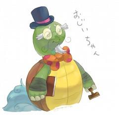Entermate Plus Turtle