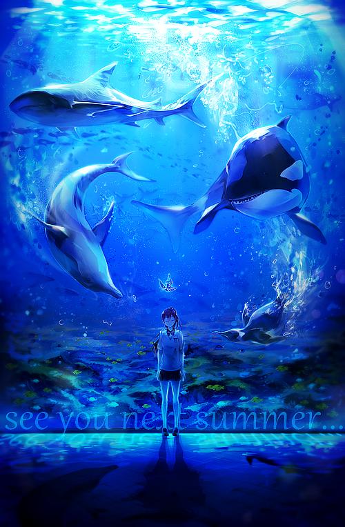 Tags: Anime, LuluSeason, Free!, Nanase Haruka (Free!), Tachibana Makoto, Matsuoka Gou, Matsuoka Rin, Ryuugazaki Rei, Hazuki Nagisa, Dolphin, Aquarium, Shark, Orca