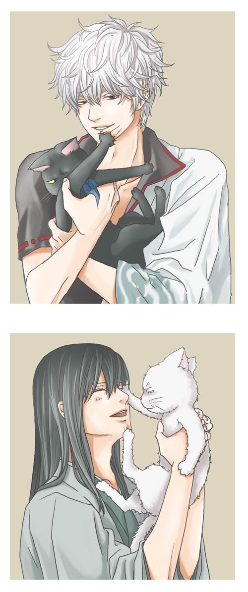Tags: Anime, Pixiv Id 2005390, Gintama, Katsura Kotaro, Katsura Cat, Sakata Gintoki, Gin (Gin Tama), White Cat, Fanart, Pixiv, GinZura, Silver Soul