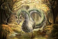 Haku (Dragon)