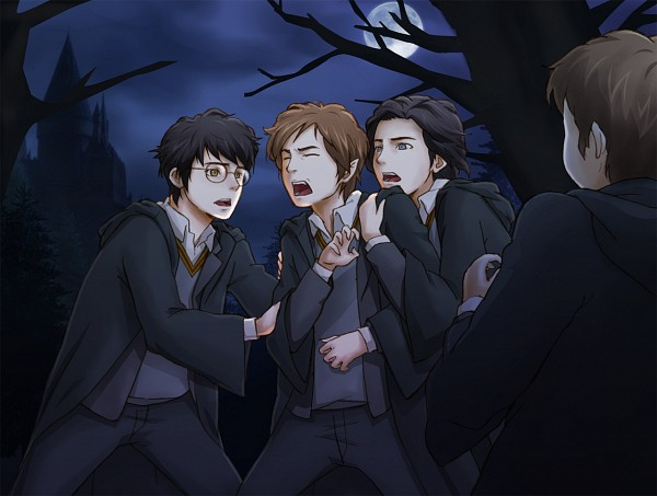 Tags: Anime, Harry Potter, Peter Pettigrew, James Potter, Remus Lupin, Sirius Black, Hand On Arm