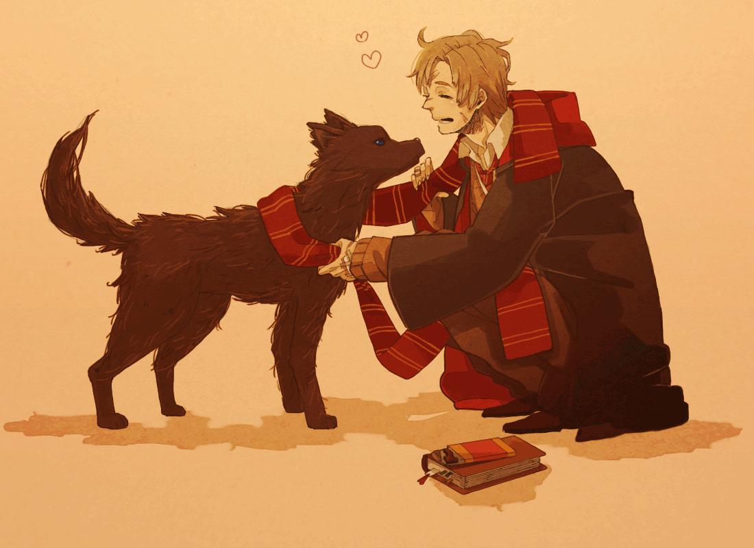 Harry Potter Sirius Black Dog