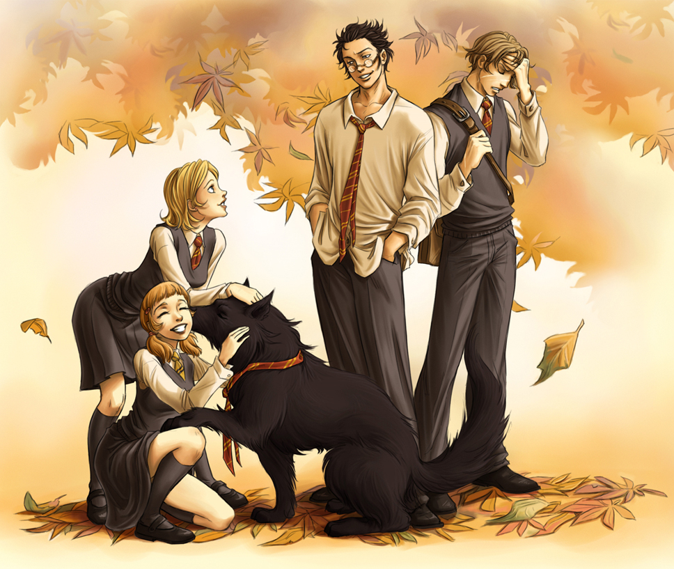 Harry Potter/#718826 - Zerochan