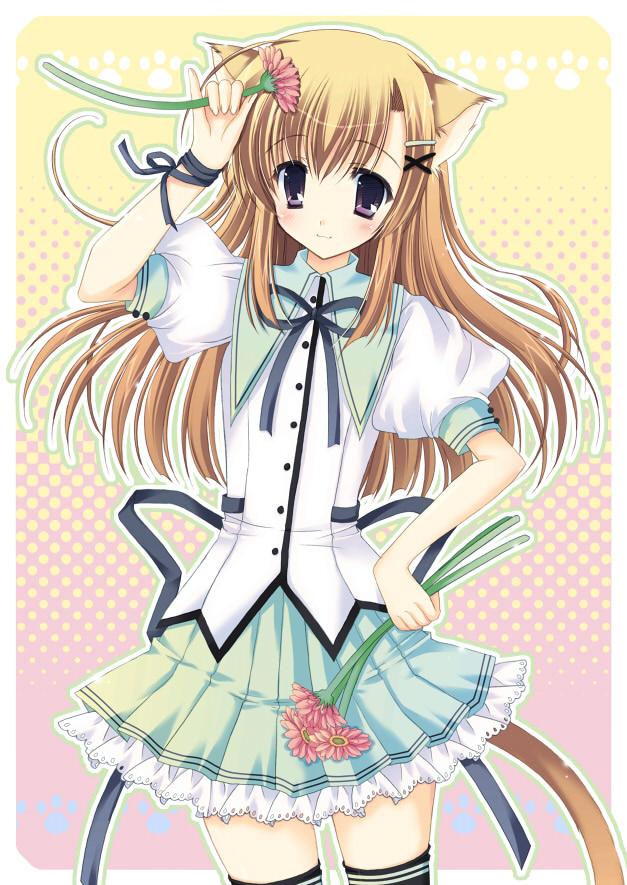 Tags: Anime, Hasekura Chiaki