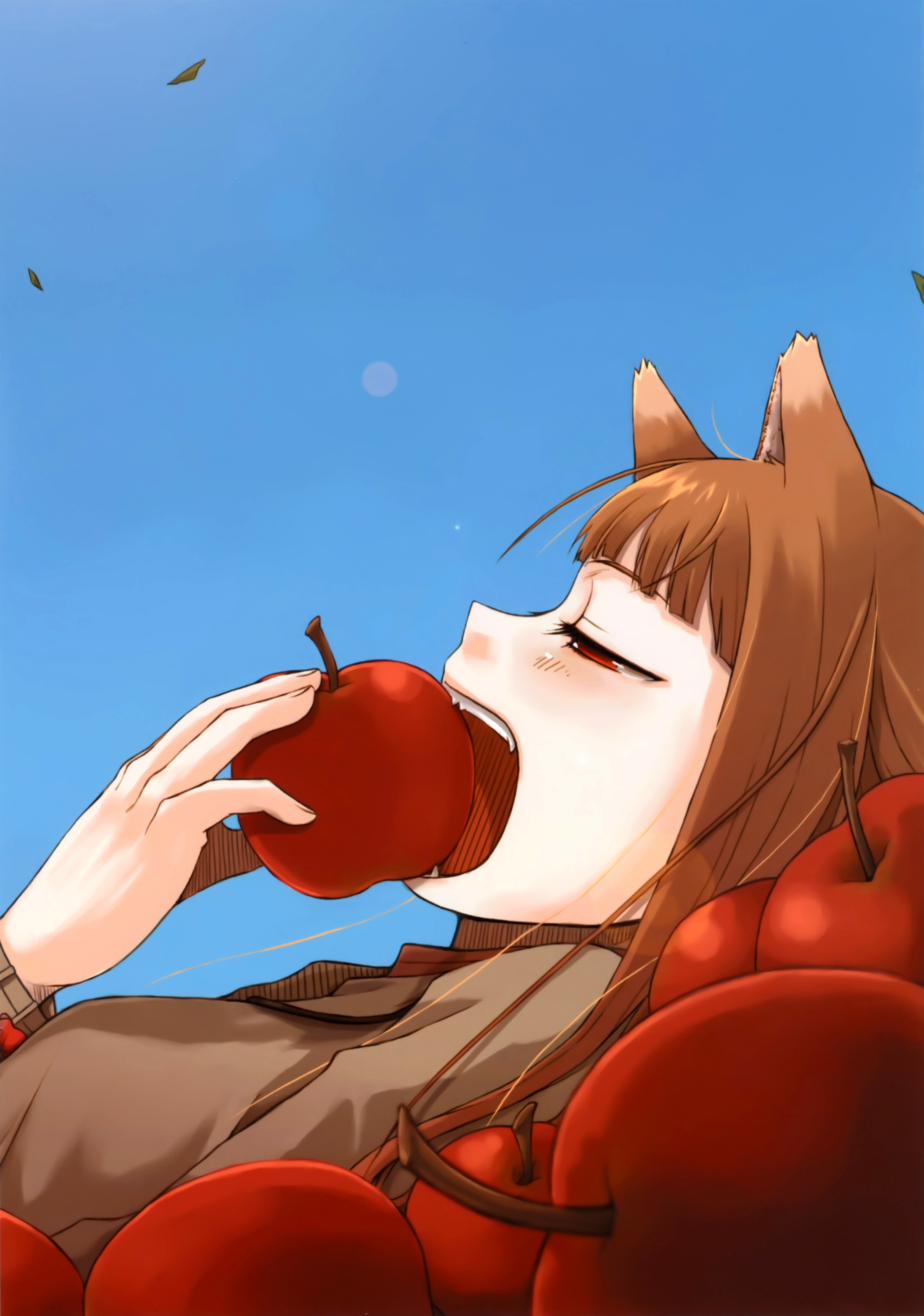 Spice and Wolf Image 2