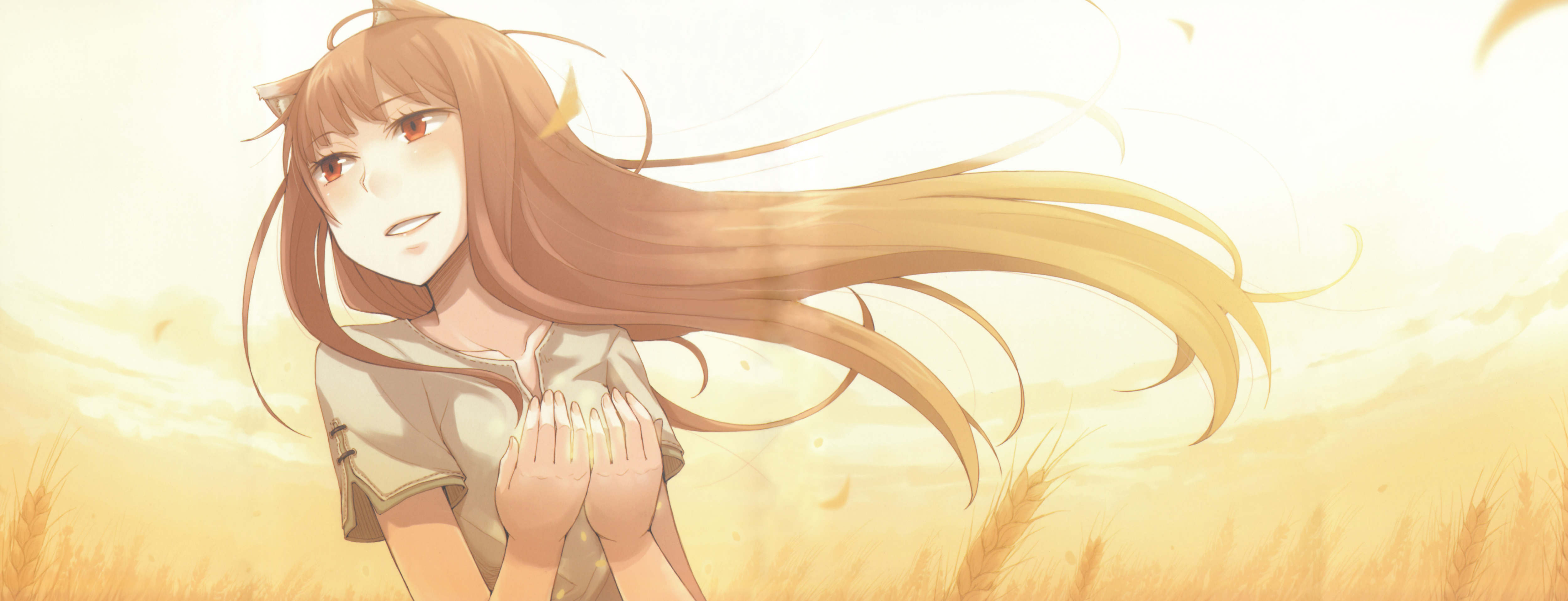 Holo in Spice and Wolf HD desktop wallpaper Widescreen High
