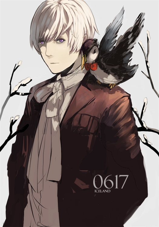 Tags: Anime, dreamocean, Axis Powers: Hetalia, Iceland, Mr. Puffin, Puffin, PNG Conversion, Mobile Wallpaper, Nordic Countries