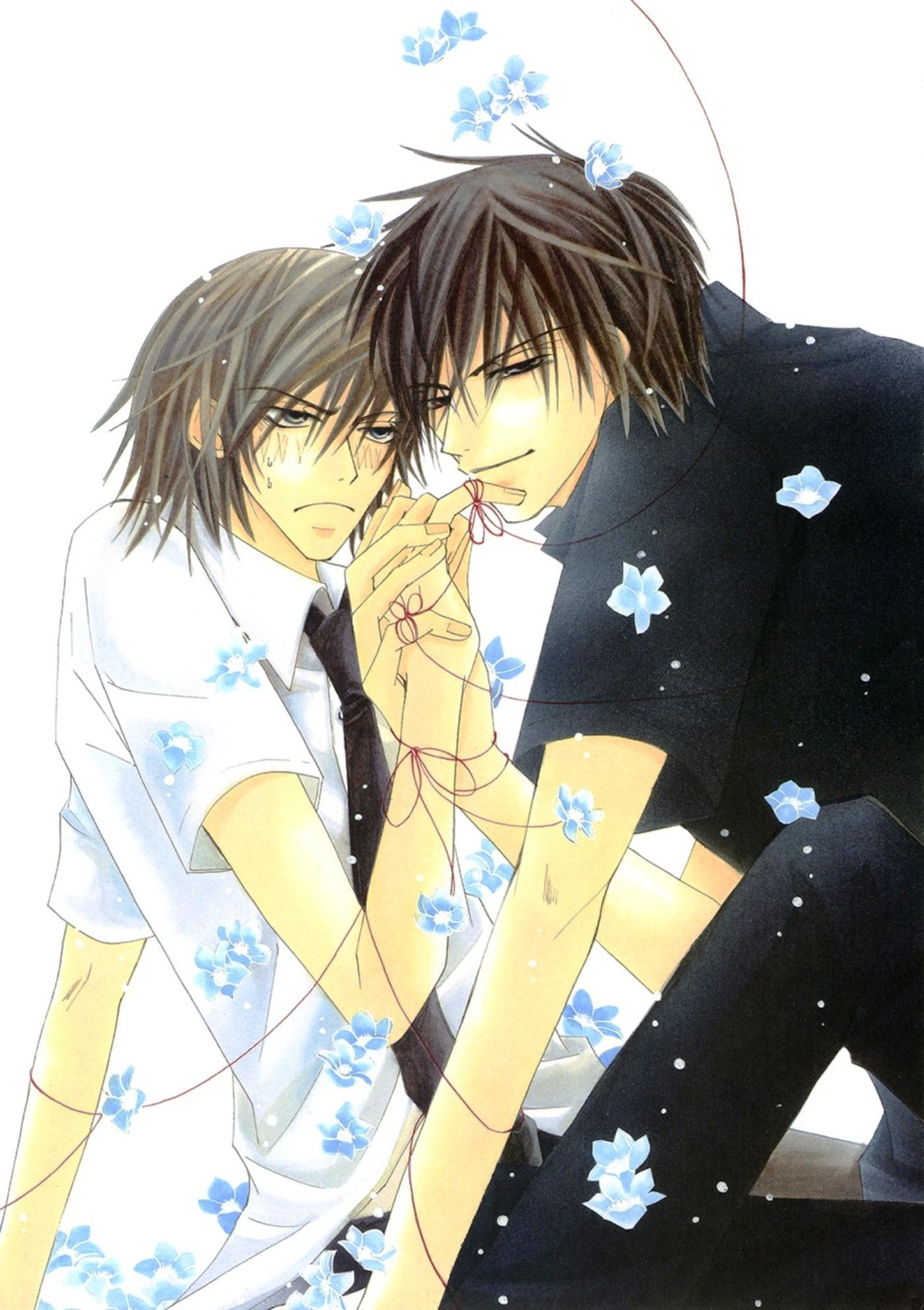 Junjou Romantica Mobile Wallpaper #137809 - Zerochan Anime ...