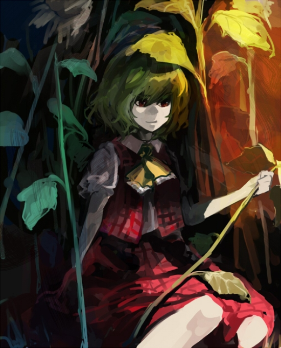 Tags: Anime, Touhou, Kazami Yuuka, Yuuka Kazami