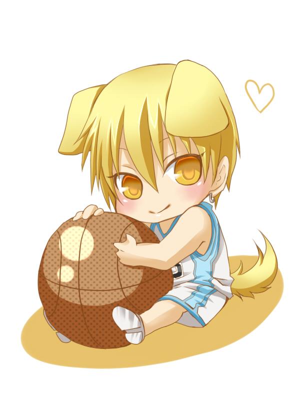 Simple Kuroko No Basuke Anime Adorable Dog - Kise  Pic_924024  .jpg