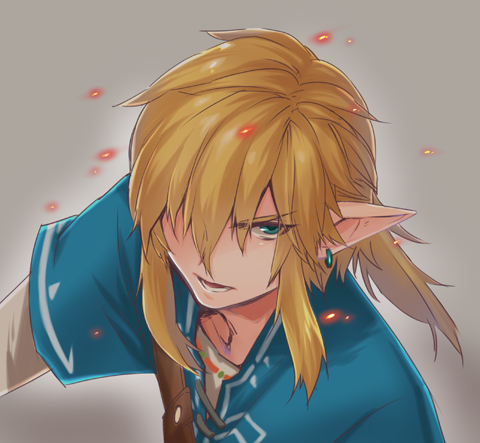 Link Breath Of The Wild Zelda No Densetsu Breath Of The