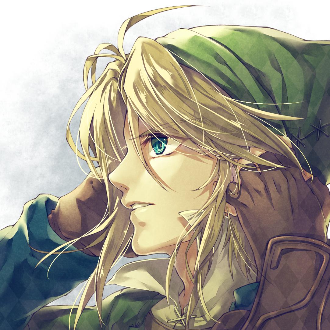 Link Twilight Princess Zelda No Densetsu Twilight