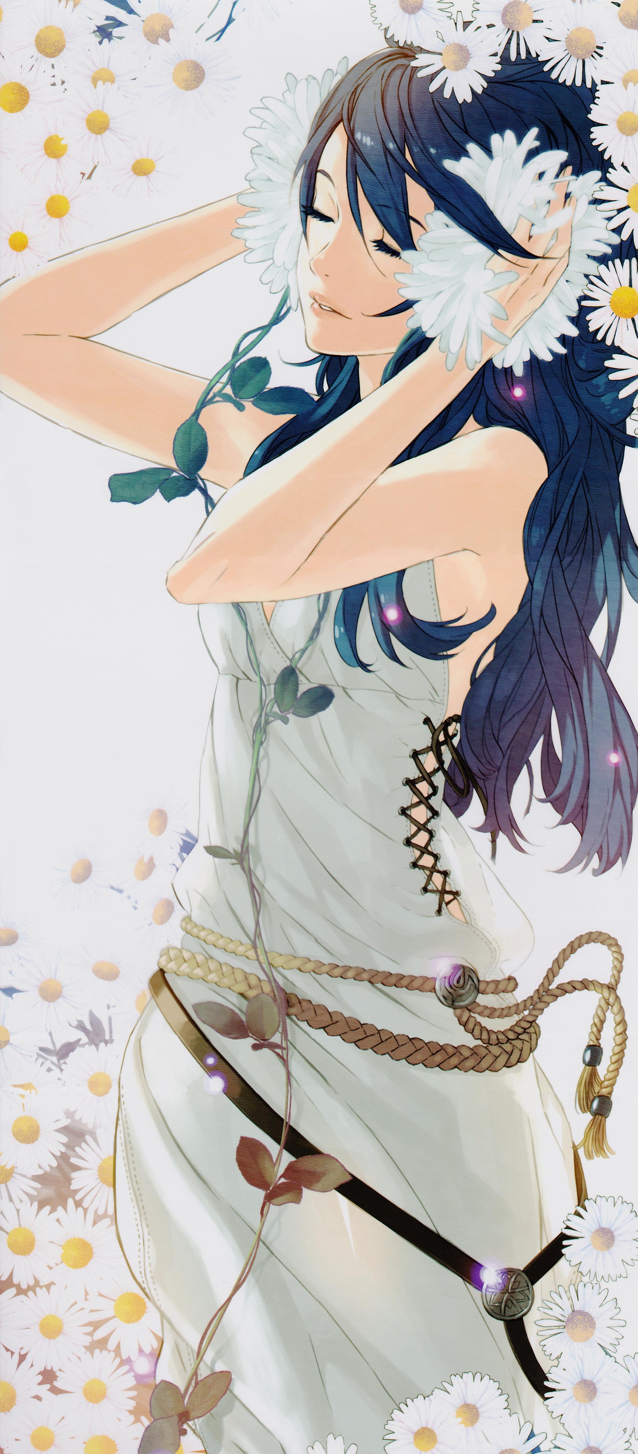 daisy (flower) - zerochan anime image board