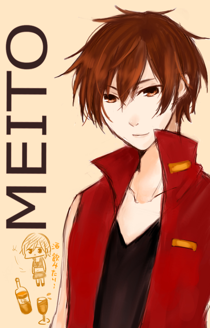 Vocaloid Meiko And Meito