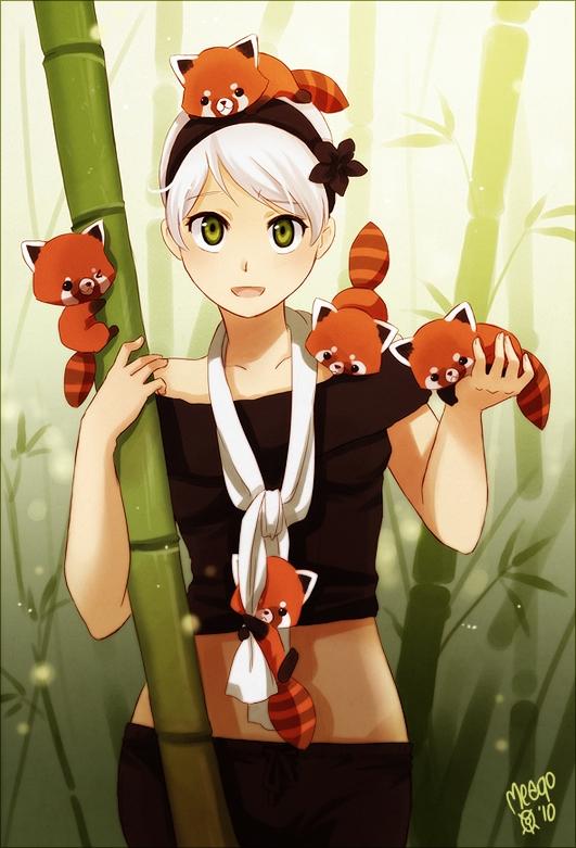 red panda animal zerochan anime image board