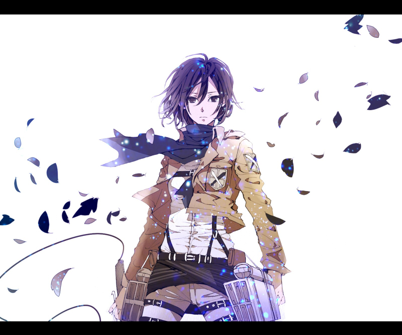 Mikasa Ackerman Attack On Titan Zerochan Anime Image Board