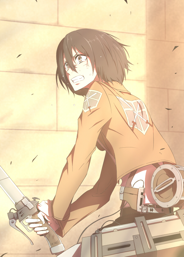 Tags: Anime, Pixiv Id 118778, Attack on Titan, Mikasa Ackerman, Pixiv, Mobile Wallpaper