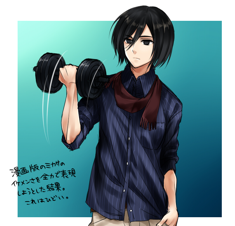 Mikasa Ackerman - Attack on Titan - Image #1511507 - Zerochan Anime
