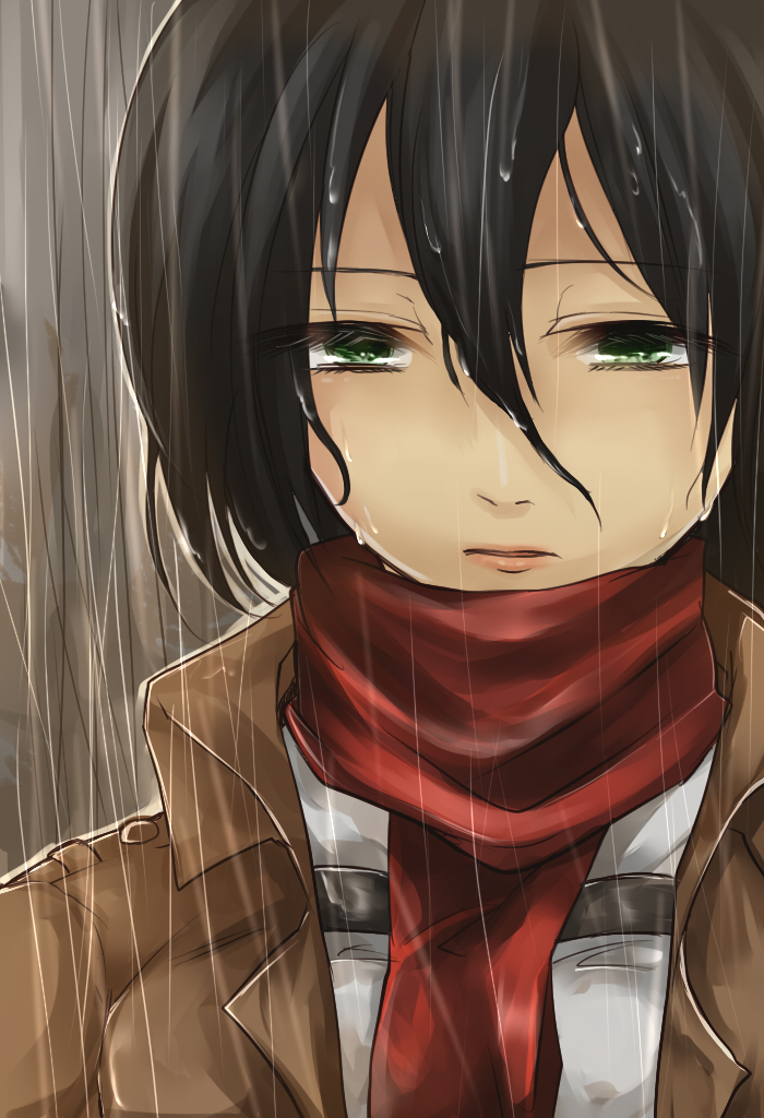 Attack on titan mikasa ackerman slideshow - 4 8