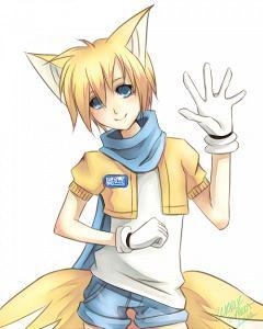 Fox  mammal  Britannicacom