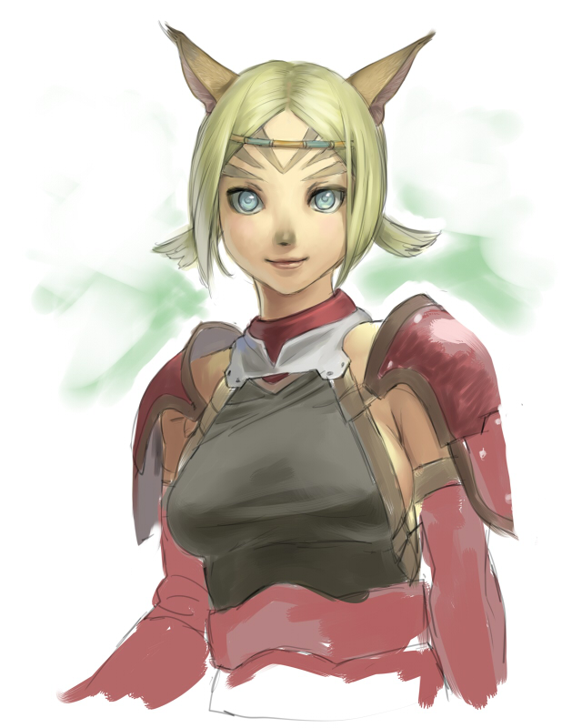 You Final fantasy xi mithra consider, that