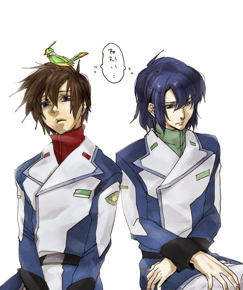 best Anime: Gundam Seed Destiny