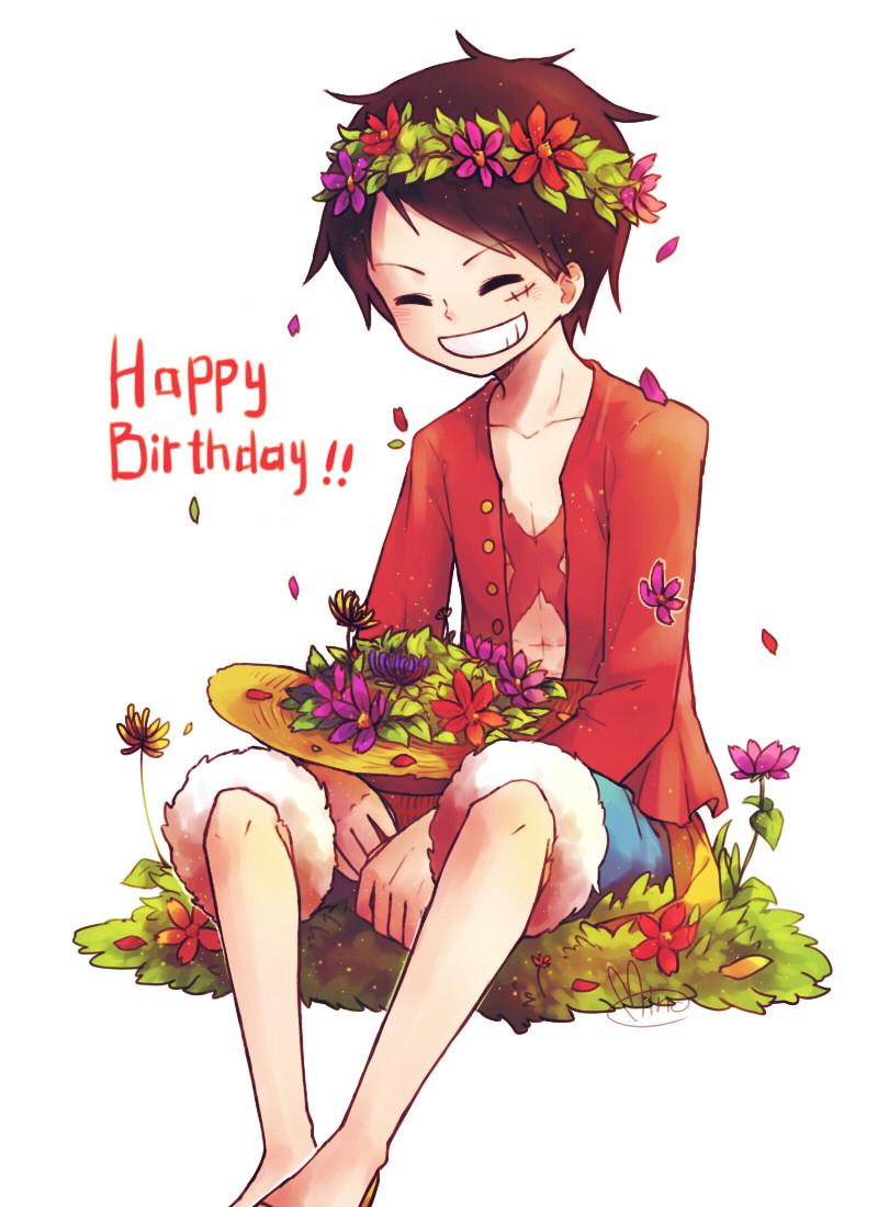 Birthday Calendar One Piece : Monkey d luffy zerochan
