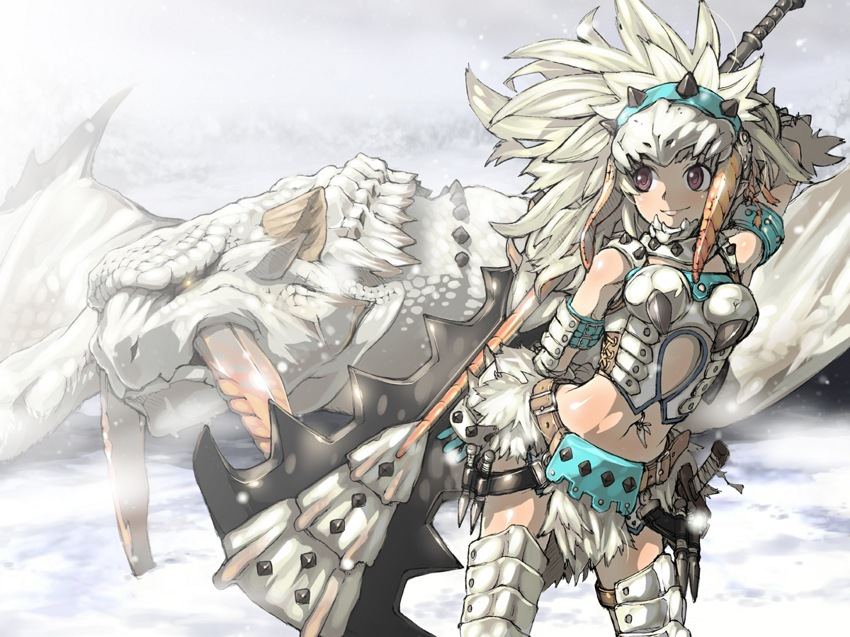 Barioth (Armor) - Monster Hunter Series - Zerochan Anime