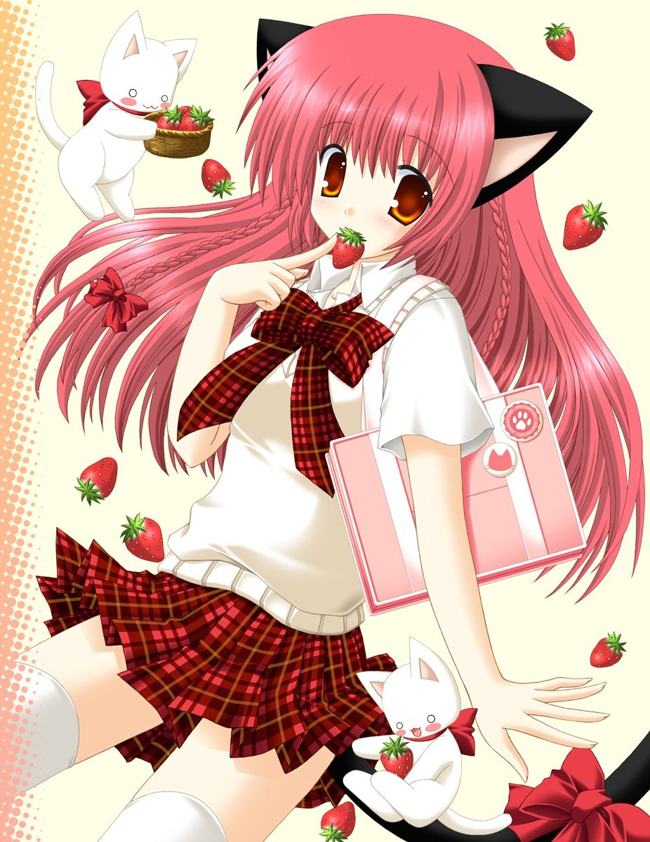 Neko Neko Zerochan Anime Image Board