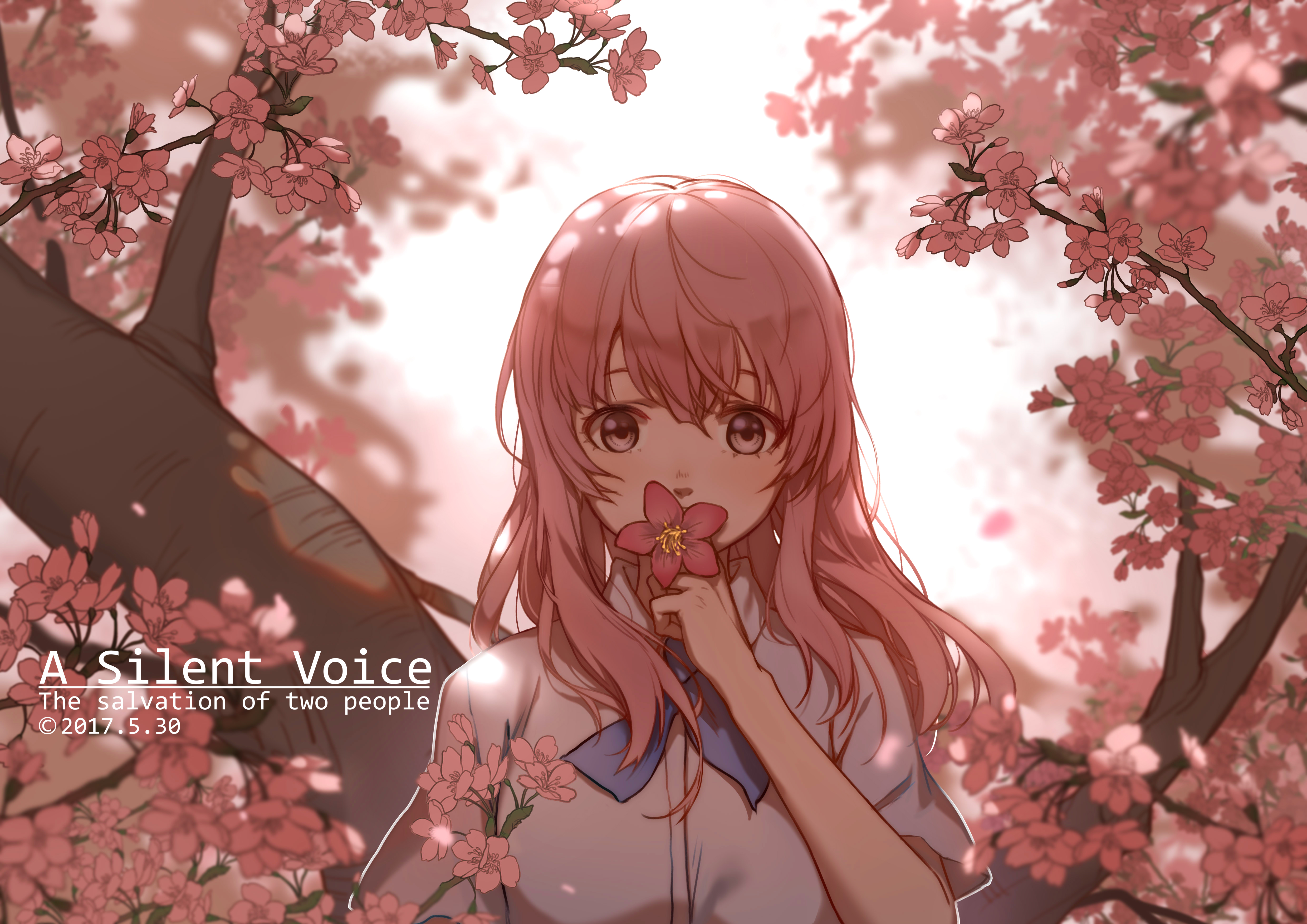 Nishimiya Shouko Koe No Katachi Zerochan Anime Image Board